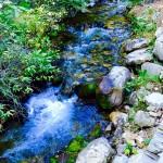 Living Water - Marsha Endahl Kramer
